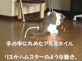 IMG_0475.jpg