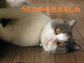 IMG_8628.jpg
