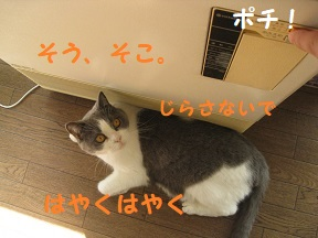 IMG_9139.jpg