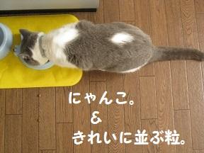 IMG_9144.jpg