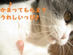 IMG_9614.jpg