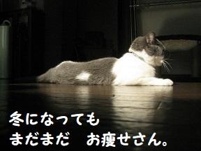 IMG_9737.jpg