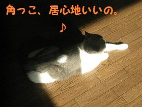 IMG_9764.jpg