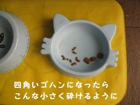 IMG_9812.jpg