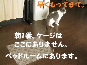 IMG_7588.jpg