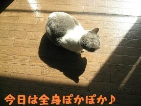 IMG_7625.jpg