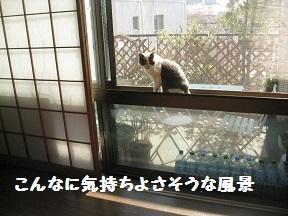 IMG_7646.jpg
