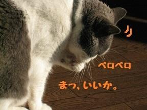 IMG_7670.jpg