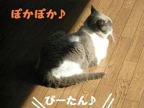 IMG_7725.jpg