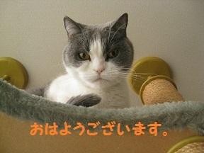 IMG_7770.jpg