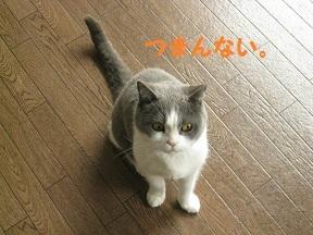 IMG_7779.jpg