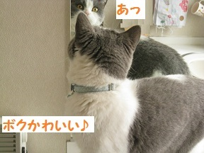 IMG_7899.jpg