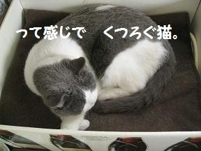 IMG_8214.jpg