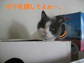 IMG_8230.jpg