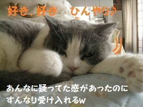 IMG_8505.jpg