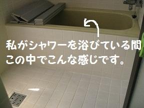 bath (3).jpg