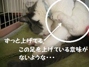cold (2).jpg
