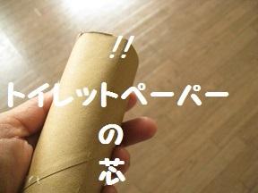 gyu (1).jpg
