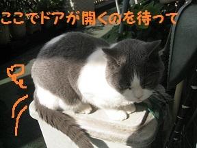 rest (2).jpg