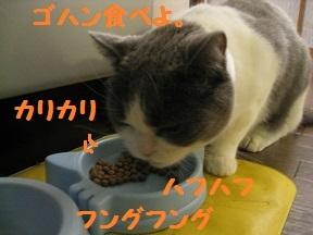 tsumanai (4).jpg