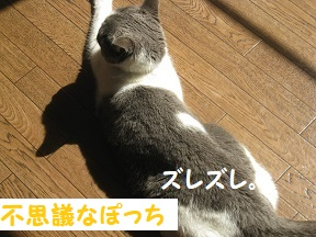 move (4).jpg