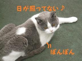 るるるん (2).jpg