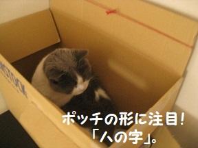 IMG_0867.jpg