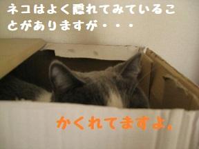 IMG_7966.jpg