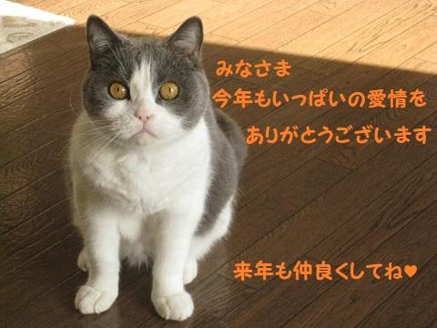 IMG_9857.jpg
