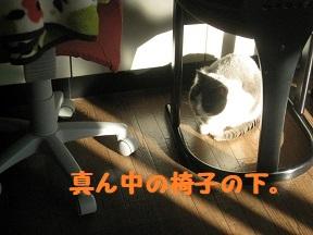 IMG_9951.jpg