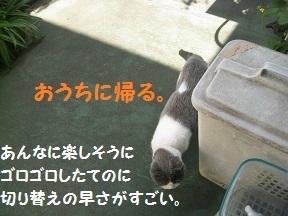 outin (4).jpg