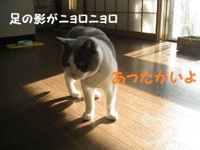 munyon (5).jpg